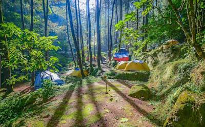 Daftar Tempat Wisata Di Puncak Bogor Yang Indah
