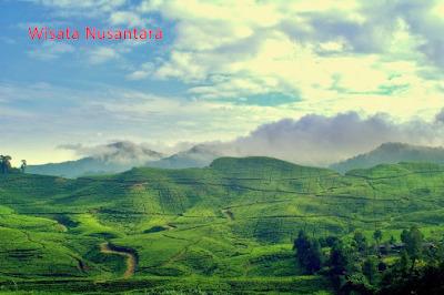 Wisata Taman Riung Gunung